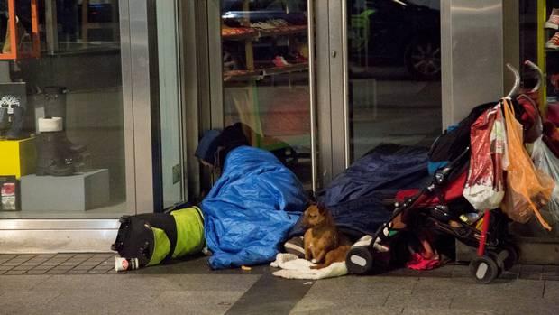 Homeless Geraldine